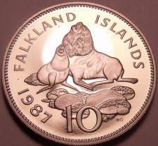Buy Rare Cameo Proof Falkland Islands 1987 10 Pence~2,500 Minted~Ursine Seal~Free Sh