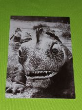 Buy VINTAGE THE OUTER LIMITS SCI-FI SERIES 1997 MGM COLLECTORS CARD #27 NMNT