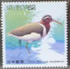 Buy Stamp Japan 1992 Water Bird Greater Painted-snipe (Rostratula benghalensis) 62 Yen
