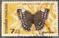 Buy Stamp Thailand 1984 7 Bhat Jungle queen Butterfly (Stichopthalma godfreyi)