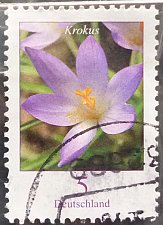 Buy Stamp Germany 2005 Definitive Issue - Flowers Crocus 0.05 Euro