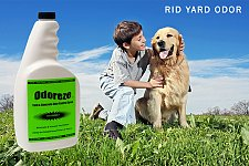 Buy ODOREZE Yard & Concrete Odor Eliminator Spray: Makes 64 Gallons to Clean Smell