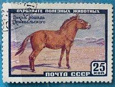 Buy Stamp USSR Soviet Union Russia 1959 Commemorative Przewalski's Horse (Equus przewal