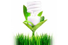 Buy SANIBULB Air Sanitizing & Air Purifying CFL Bulb: 25W Warm White Replacement
