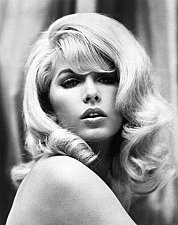 Buy Rare STELLA STEVENS Hollywood Superstar 8 x 10 Promo Photo Print