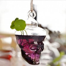 Buy glass wall vase,glass terrarium skull
