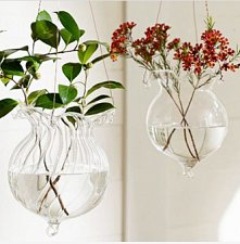 Buy 2PCS glass wall vase,glass terrarium skull