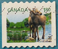 Buy Stamp Canada 2012 Fauna - Baby Wildlife Moose (Alces alces) $1.80