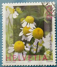 Buy Stamp Switzerland 2003 Medicinal Plants Chamomile (Matricaria chamomilla) 220 Centime
