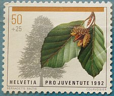 Buy Stamp Switzerland 1992 Pro Juventude Child Development Common Beech (Fagus sylvatica)