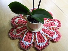 Buy Dishcloth Doily~Crochet~Handmade~100% Cotton~Melon trimmed with Varigated Thread
