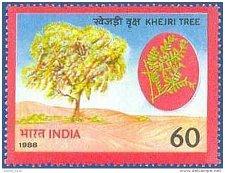 Buy India mnh 1v stamp 1988 1152 World Enviornment Day Khejri Tree 60P