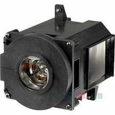 Buy NEC NP-21LP NP21LP 60003224 LAMP IN HOUSING FOR PROJECTOR MODEL PA500U