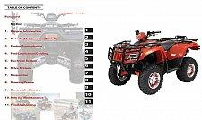 Buy 2006 Arctic Cat ATV ( 400 500 650 TBX TRV H1 ) Service Manual on a CD