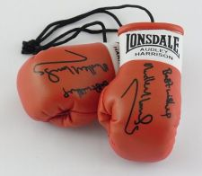Buy Autographed Mini Boxing Gloves Audley Harrison