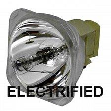 Buy ELECTRIFIED 180-230/1.0 E17.5 69813 E-SERIES / ELECTRIFIED-SERIES BULB #55