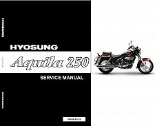 Buy Hyosung Aquila 250 ( GV250 ) Service Manual CD - AlphaSports, S&T Motors Mirage