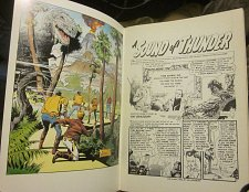 Buy EC PORTFOLIO #5 Al Williamson VERY LARGE OVERSIZED GoldLeaf+ DAVIS, WOOD artwork