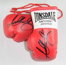 Buy Autographed Mini Boxing Gloves Anthony Joshua