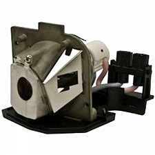 Buy OPTOMA SP.85R01GC01 SP85R01GC01 LAMP IN HOUSING FOR MODELS EP749 TX800 X25C