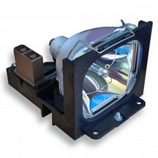 Buy TOSHIBA TLP-LF6 TLPLF6 LAMP IN HOUSING FOR PROJECTOR MODEL TLP681E