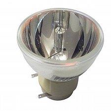 Buy VIEWSONIC RLC-078 RLC078 BULB OLNY FOR PROJECTOR MODEL PJD5232L