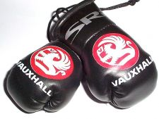 Buy Vauxhall SRi Mini boxing gloves.....ideal for rear view mirror