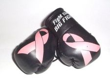 Buy Breast Cancer (Fight the Big Fight) Mini Boxing Gloves