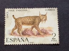 Buy Spain 1 v used stamp 1971 Endangered Wildlife Iberian Lynx mi 1932
