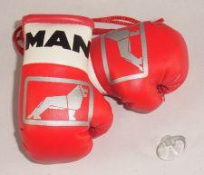 Buy Man Trucks Mini Boxing Gloves for Lorries/Trucks.