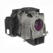 Buy NEC NP-09LP NP09LP LAMP IN HOUSING FOR PROJECTOR MODEL NP61