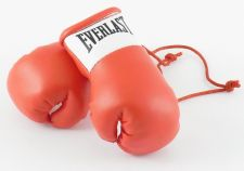 Buy Everlast Red Mini Boxing Gloves for Autograph Hunters
