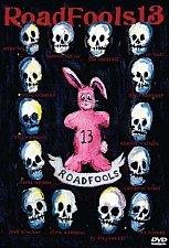 Buy ROAD FOOLS 13 DVD Van Homan,Ty Styvesant,Matt Beringer,Fuzzy Hall,Dennis McCoy