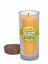 Buy :10634U - Mimosa Scented Soy Blend Wax Candle Highball White Glass