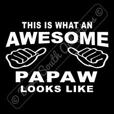Buy This Is What An Awesome Papaw Looks Like T-shirt (16 Tee Colors)