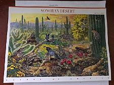 Buy USA United States Sonoran Desert mnh sheet 1999