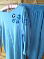 Buy 2 Piece Set Woman's Blue Pants & Top Size Medium By Roamans