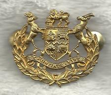 Buy South African EX UNITATE VIRES Military Army Cap Badge