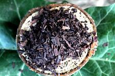 Buy 3.5g Alkanet Root (Alkanna tinctoria) Certified Organic & Kosher Herb