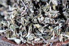 Buy 1g Damiana Leaf (Turnera diffusa) Certified Organic & Kosher Certified