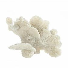 Buy *17838U - Large White Coral Tabletop Décor Accent