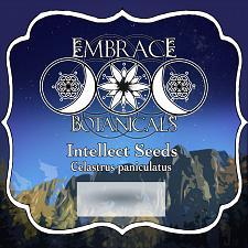 Buy 4 oz Intellect Tree Whole Seeds (Celastrus Paniculatus)
