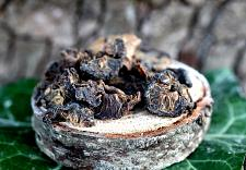 Buy 1g Amla Whole (Phyllanthus emblica) Certified Organic Kosher