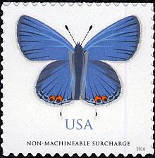 Buy 2016 68c Eastern Tailed-Blue (Butterfly) Non-machineable Scott 5136 Mint F/VF NH