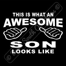 Buy This Is What An Awesome Son Looks Like T-shirt (16 Tee Colors)