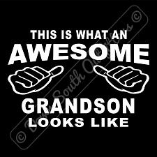 Buy This Is What An Awesome Grandson Looks Like T-shirt (16 Tee Colors)