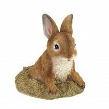 Buy *16128U - Curious Brown Bunny Garden Statue Yard Art