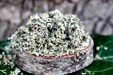 Buy 2 oz Damiana Leaf (Turnera diffusa) Certified Organic & Kosher Certified