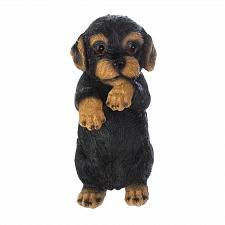 Buy *17277U - Climbing Cutie Black Dachshund Puppy Parker Fence Sitter Figurine