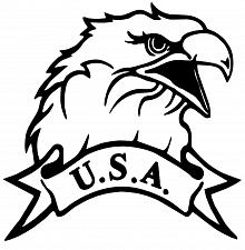 Buy USA American Patriotic Eagle Window Decal Sticker Car Truck Vinyl Funny
